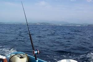 Bali trolling fishing