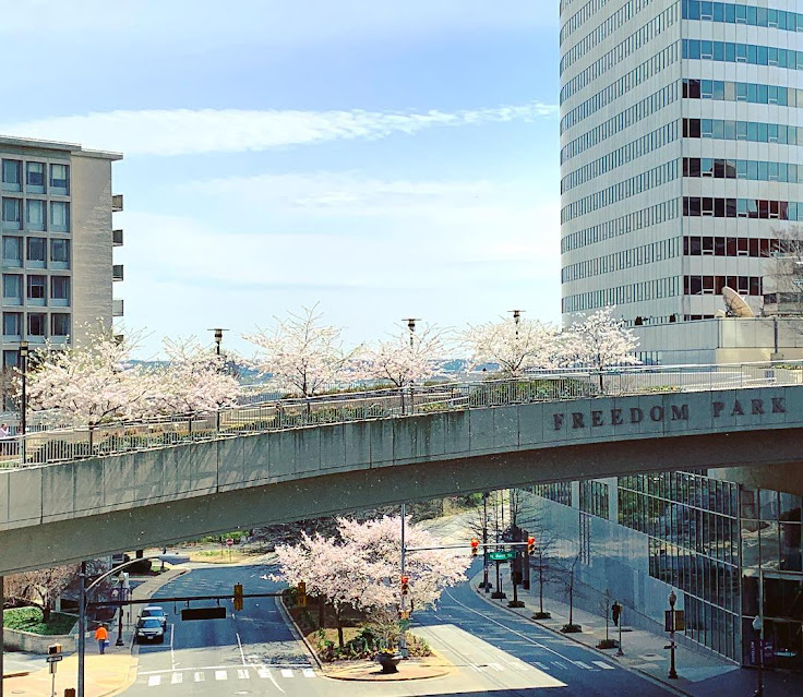 Freedom Park in the springtime. Photo by @jess.c.ee.
