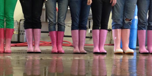 Pink Boots launches mentoring program