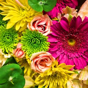 Colorful Bouquet by Lawrence Ferreira - Flowers Flower Arangements ( mixed flowers, spring flowers, pink flowers, bouquet, floral photography, floral design, purple flowers, green, florals, flower arrangement, summer flowers, yellow flowers, mums, flowers )