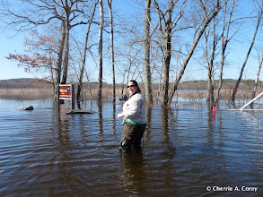Photo: Susan Russo inspects the flooding