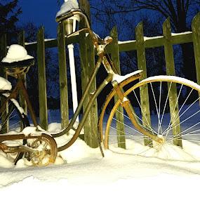 Old bike by Nat Bolfan-Stosic - Transportation Bicycles ( fence, old, winter, bike, snow )