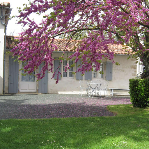 facade-de-la-chambre-dhotes-familiale-de-charme-4-epis-du-clos-de-la-garenne-17700-cottage-pour-trois-a-cinq-personnes-avec-lit-160-et-lits-90