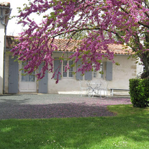 Cottage accessible Tourisme & Handicap
