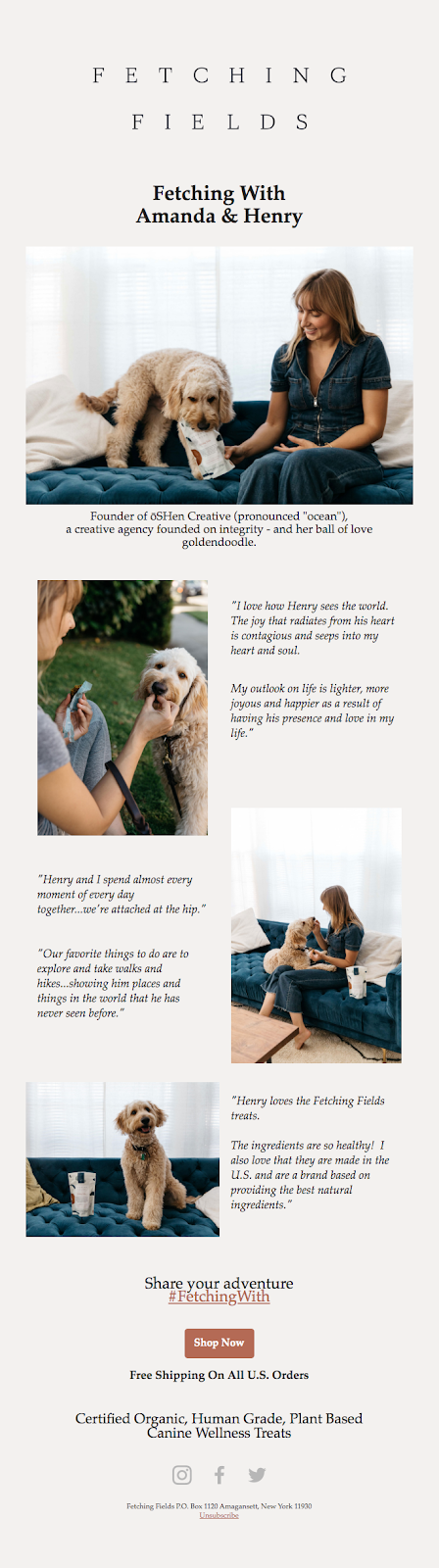 tell a story in email template