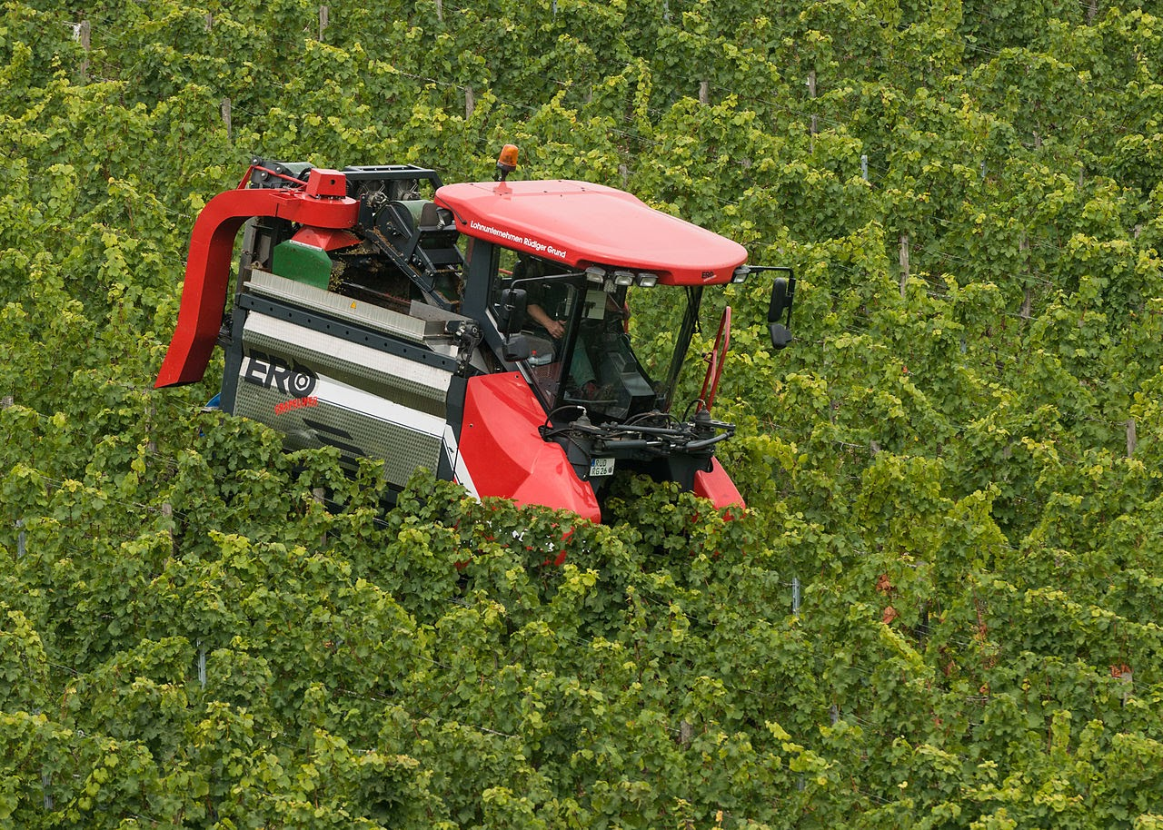 An ERO Grapeliner SF200 in the Rüdesheim vineyards.