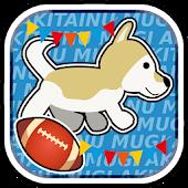 柴犬ムギ - 水中ラグビー世界大会への挑戦