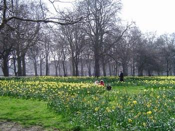 Photo Green Park