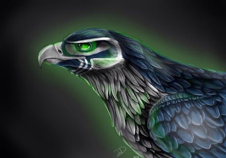 Wallpapers for Seattle Seahawks Android Apps on Google Play