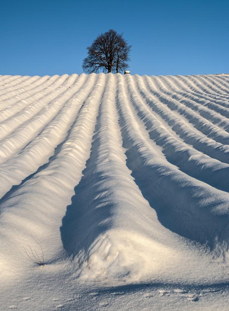 Prospettiva invernale di Livius
