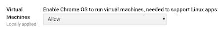 Chrome OS virtual machines setting in Admin console