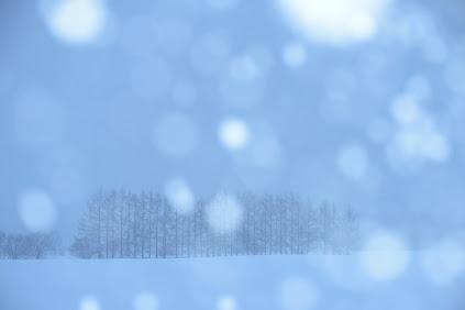 しんしんと降り続ける雪