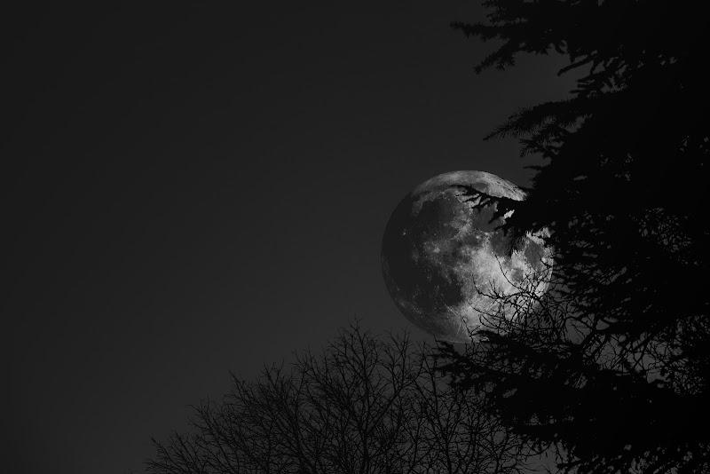 """""""E la luna bussò alle porte del buio.."""" di Erre-Gi"""