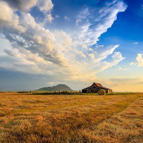 Bear Butte by Kendra Perry Koski - Landscapes Prairies, Meadows & Fields ( prairie hay, meade county, thunderstorm, grass, beautiful, south dakota, yellow, gray, storm, landscape, landmark, gray sky, sturgis, lightning, iconic, barn, blue, sunset, hay, summer, july, hay bale, bear butte, dakota winds photography, #GARYFONGDRAMATICLIGHT, #WTFBOBDAVIS,  )