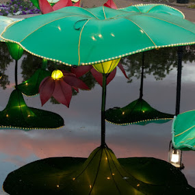 Chinese Lantern Festival by Chris Wangard - News & Events Entertainment