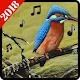 Ringsignaler fåglar 2018 for PC Windows 10/8/7