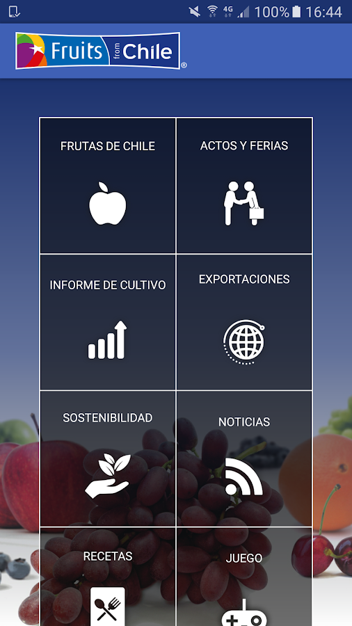 Frutas de Chile: captura de pantalla