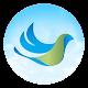 Indian Birds (app)