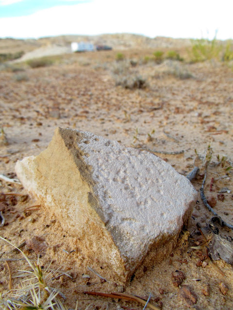Metate fragment near camp