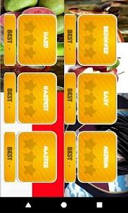 Pairs Fun Gaming - náhled