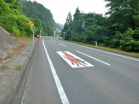 国道398号のタコ親子 写真1