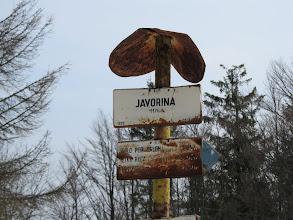 Photo: 23.Jaworzyna (Javorina, 1173 m). Słowacki słupek szczytowy. Nie licząc Wielkiej Raczy jedyny na tej trasie. Jego stan to jakby żywe  potwierdzenie słów MK o szybkim niszczeniu się metalowych oznakowań ;)