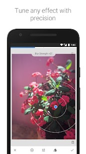 photo editor app Snapseed apk Free Download 3