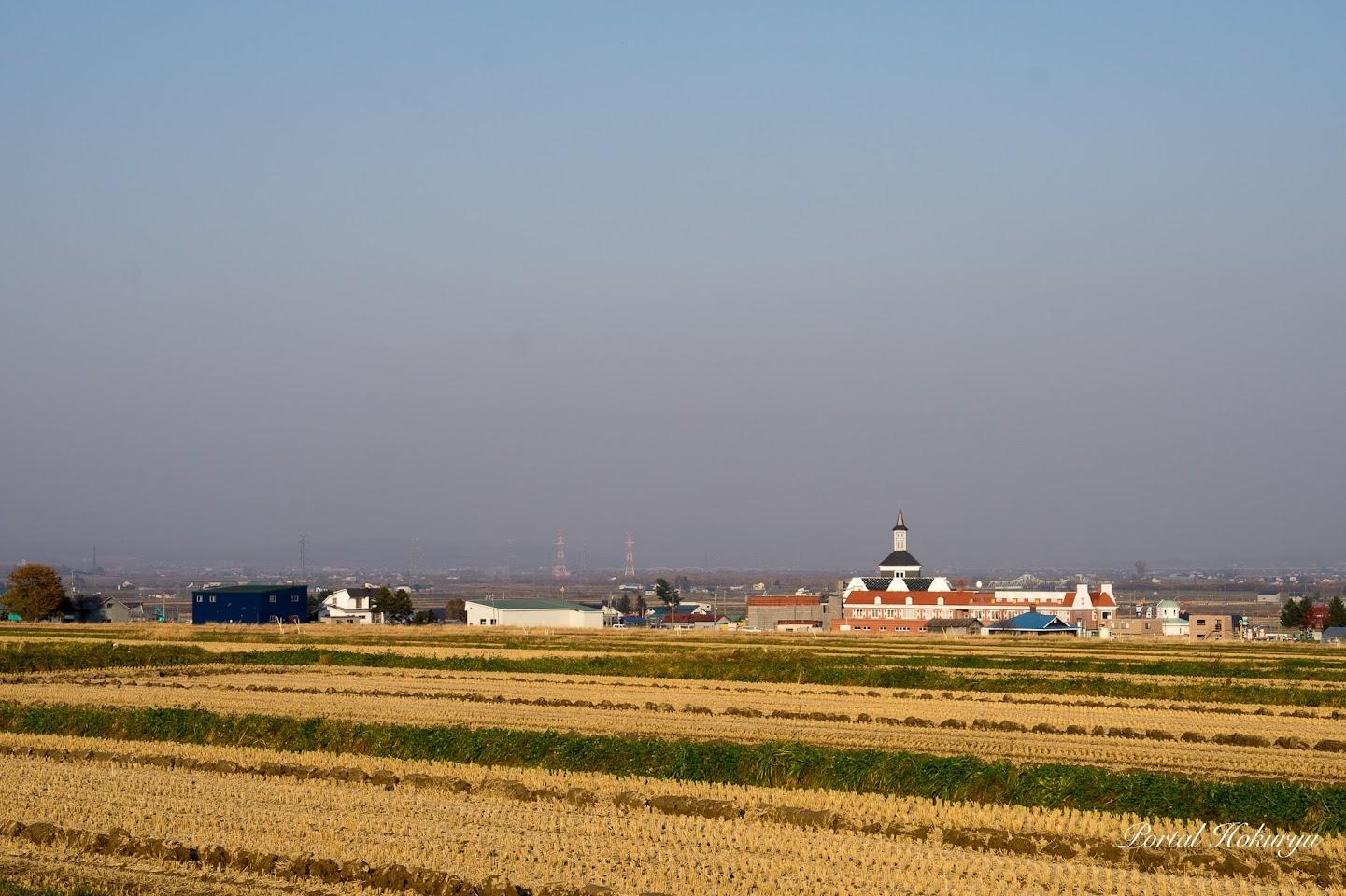 稲株模様が織り成す風景