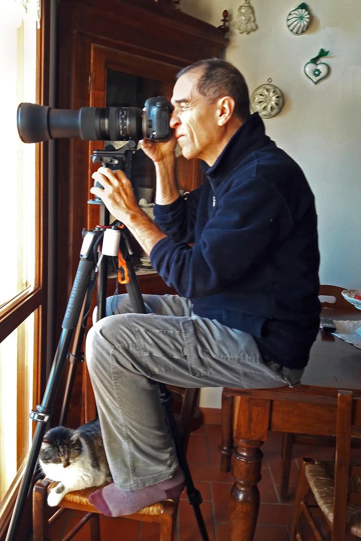 domestic bird watching di MauroV