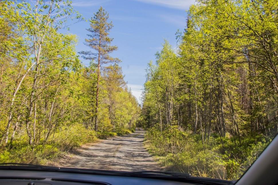 natuur-zweden