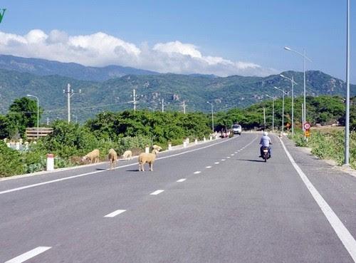 Đến ngoạn cảnh Vịnh Vĩnh Hy bằng cung đường mới