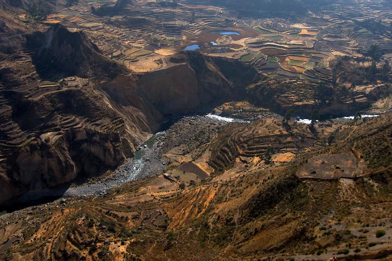 Lavoro della natura, lavoro dell'uomo (Perù - Colca Canyon) di ZenoR