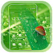 Green Nature Butterfly Waterdrop Theme