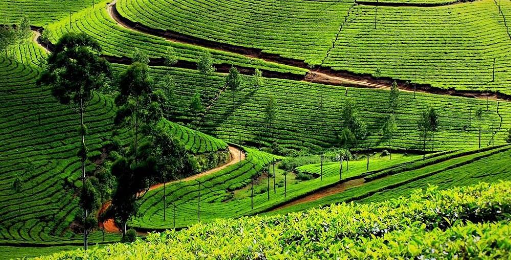 manipur-north-east-india_image