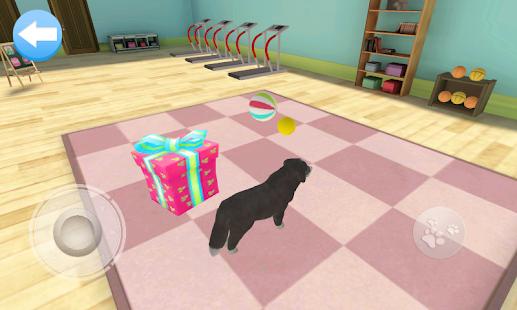 Dog Home - náhled