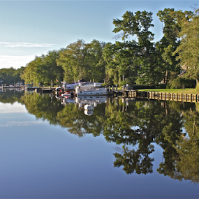 Good Morning Lake Lenape by Susannah Lord - Landscapes Waterscapes ( water, mirror, reflection, green trees, sky, bench, grass, blue, boats, trees, lake, reflecting,  )