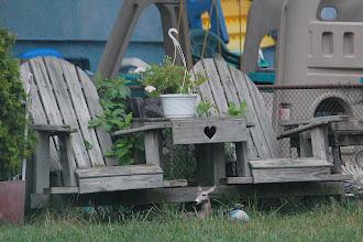 Photo: Day 109 ... Elmwood Park