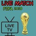 FIFA Live Match