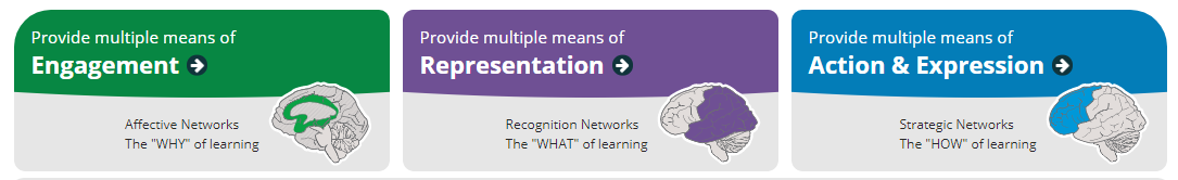 """The """"Why"""" of Learning; Image of Representation: The """"What"""" of Learning; Image of Action & Expression: The """"How"""" of learning."""