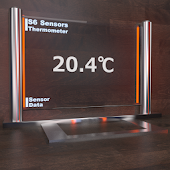 S6 Digital Thermometer