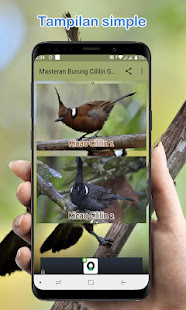 Masteran Burung Cililin Gacor Offline On Windows Pc Download Free 1 0 Com Blangkonapp Masteran Cililin Gacor