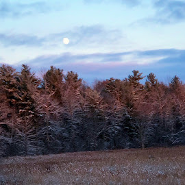 Daytime moon,winter approaching  by Ginny Serio - Instagram & Mobile iPhone