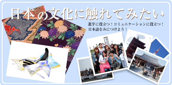 Tokyo international culture education institute (TICEI)