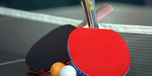 玩免費運動APP|下載Table tennis theme app不用錢|硬是要APP