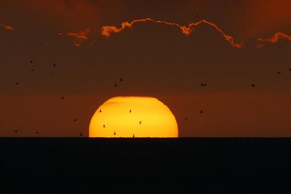 Seaside sunset  di viola94