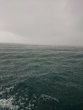 Photo: ・・・大雨です。 止んでくれないかな?