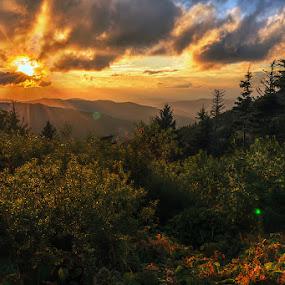 Blue Ridge by Jeremy Yoho - Landscapes Sunsets & Sunrises ( clouds, mountains, sunset, trees, sunrise )