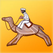 Camel Racing at the fairground
