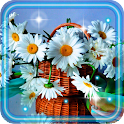 Daisy and Camomiles LWP icon