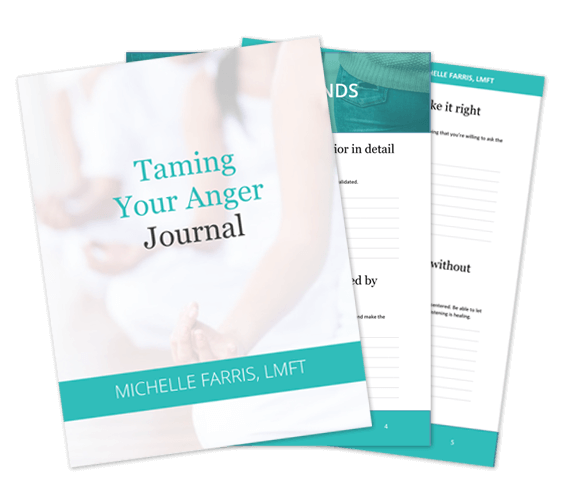 Taming your anger journal - Michelle Farris